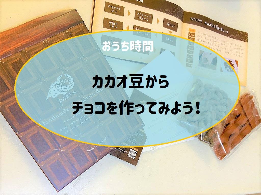 カカオ豆から手作りチョコレート・キット